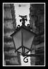Toro (J.Gargallo) Tags: rubielosdemora teruel aragón españa faroles farolas farol forja hierro framed blancoynegro blackwhite blackandwhite byn bw blanconegro canon canon450d canonefs18200 eos eos450d 450d