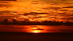 Siesta Key Sunset (Jim Mullhaupt) Tags: sunset sundown dusk sun evening endofday sky clouds color red gold orange pink yellow blue tree palm outdoor silhouette weather tropical exotic wallpaper landscape nikon coolpix p900 siestakey sarasota florida 1beach america usa vacation holiday travel warm gulfofmexico sarasotacounty family fun gulfcoast palmtrees sunsets sunrises awesome swimming beach bikini whitesand photo flickr geographic picture pictures camera snapshot photography nikoncoolpixp900 nikonp900 coolpixp900