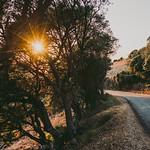 Evening road thumbnail