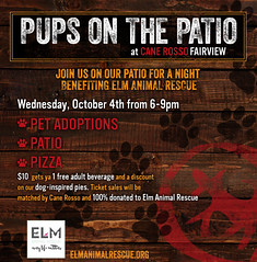 Pups on the Patio 10-4-2017 CRF ELM Animal Rescue (canerossotx) Tags: pups patio pupsonthepatio graphic flier