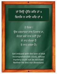 ਹਾਂ love the lord whose neither dies nor destroyed (DaasHarjitSingh) Tags: srigurugranthsahibji sggs ss sikh sikhism sikhsm singh satnaam sahib gurbani guru granth gobind teg waheguru