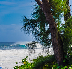 Wave of the year mini (bffpicturesworld) Tags: wild wave surf surfing lanscape beautiful blue virgin secretspot peace shooting