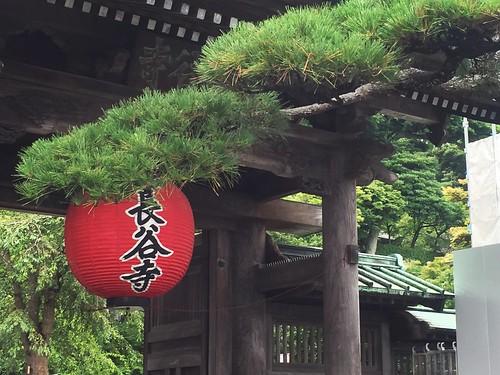 鐮倉長谷寺