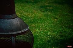 Late Summers Day (MBates Foto) Tags: abstract availablelight color daylight daytime existinglight firepit green homeandgarden minimalist nikkorlense nikon nikond810 outdoors spokane washington unitedstates 99203