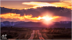 The Road ahead is Bright (Moe Ali Photography) Tags: sunset beautifulsunset rockymountains road highway hope beauty peace relaxation stunning positivity colors tones clouds sun flare sunrise hills moeali canon7dmarkii canon100400ii landscape nature outdoors calgary alberta rays travel trip