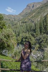 (Persistencia de la Memoria) Tags: cajon maipo santiago nature paisaje naturaleza rio montañas cerros amor cerro love campo tranquilidad chile montaña verde arbusto arbol treking riomaipo