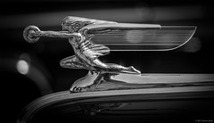 1940 Packard, Goddess of Speed ©2017 Steven Karp (kartofish) Tags: blackandwhite newhopeautoshow2017 packard hoodornament automobile newhope pennsylvania radiatormascot motormascot vintage motorcar depthoffield bokeh buckscounty chrome refledtion fujifilm fuji xt2
