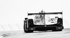 White ride (speedcenter2001) Tags: 52 ligier p josegutierrez olivierpla imsa racing roadamerica roadcourse roadracing motorsports sportscar prototype monochrome blackandwhite highkey tmax sep2 silverefexpro2 grain 400mmf28gvr nikon400mmf28gvr d500 elkhartlake elkhart wisconsin rear