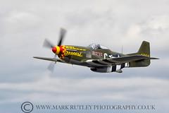 MUSTANG - P-51D (mark_rutley) Tags: riat2017 worldwar2 aircraft aviation aviationphotography warbird mustang