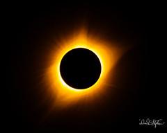 _N7A9933_DxO (dcstep) Tags: mitchell nebraska unitedstates us induro indurotripod solarfilter solareclipse totalsolareclipse canon5dmkiv ef500mmf4lisii ef14xtciii allrightsreserved copyright2017davidcstephens dxoopticspro1142 spectrumtelescopeglasssolarfilterst675g