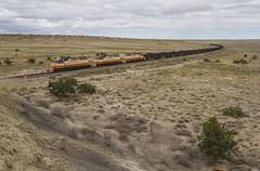 (THE Woodtick) Tags: exsantafe exbaltimoreohio exatchisontopekaandsantafe coal newmexico escalantewestern bnsf sd40 sd403 cuba