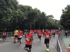 Maratón de la Ciudad de México 2017 (RunMX.com) Tags: maratoncdmx maraton cdmx maratondelaciudaddeméxico 2017 fotos resultados runmx run mx corredores corredora porra meta 21k