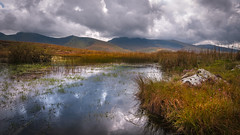 Autumn is coming .. (Einir Wyn Leigh) Tags: landscape outdoors walking pleasure water lake mountains fall autumn colorful nature natural wales cymru blue orange gold uk