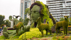 Mother Nature (caribb) Tags: gatineau quebec québec canada urban city 2017 downtown centreville centrum gardens culturalmosaic150 art mosaïcanada150 33mosaiculturedisplays history horticulture horticulturalartistry plants flowers shrubs topiary motherearth mothernature