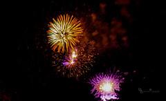 Ending Burst (Donald.Gallagher) Tags: fireworks greenwood horizontal longwoodgardens northamerica pa pennsylvania public summer typecolor typelightroom typemanualfocus typeportrait typewideangle usa