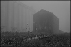 Phantom (argentography) Tags: bartonville illinois peoria midwest kodak medalist trix monochome abandoned fog noir grainelevator