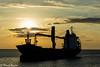 Cargo au soleil matinal (Thierry Poupon) Tags: cargo lumière mer méditerranée navire orange portlanouvelle soleil bateau ciel contrejour lever leverdesoleil nuages languedoc france fr