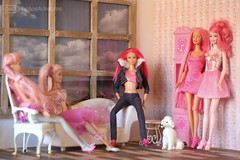 ladies in pink (photos4dreams) Tags: ladiesinpinkp4d photos4dreams photos4dreamz p4d barbie fairy fee pink mattel hair dress doll toy barbies girl play fashion fashionistas outfit kleider mode puppenstube tabletopphotography reroot canoneos5dmark3