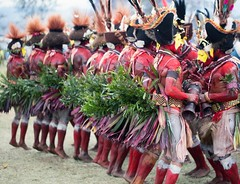 Huli wigmen dancing (kthustler) Tags: goroka singsing papuanewguinea tribes huliwigmen mudmen