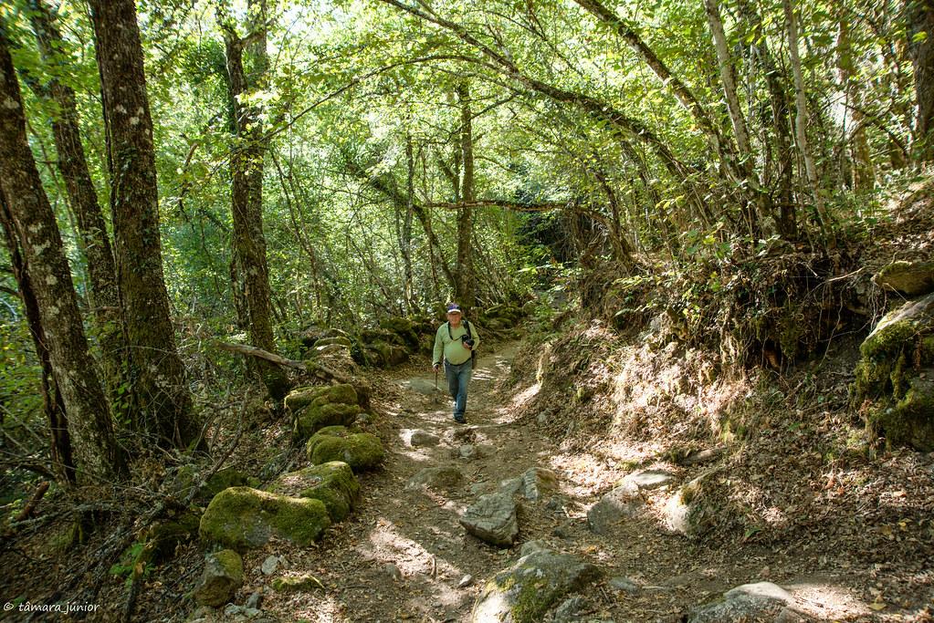10.- 2017.- Caminhada - Sotillo de Sanábria-Cascata e Laguna de Sotillo-Sotillo (65)