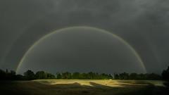 I payed 89€ for this rainbow... (explored) (Fratercula arctica) Tags: doublerainbow rainbow buckenhof erlangen rain