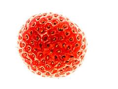 Strawberry Sun (FotoCorn) Tags: highkey strawberry macromonday hmm happymacromondays macromondays aardbei happymacromonday