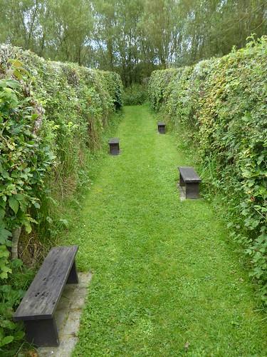Dead End Maze