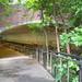 Centennial Campus greenway