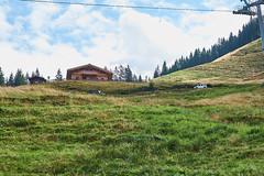20170820-Gipfelfahrt-Saalbach-Sebastian-Albert-033