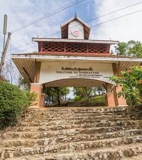 doi pha tang - thailande 18