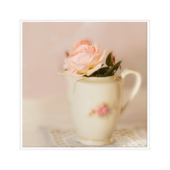 Saturday Rose (BirgittaSjostedt) Tags: rose pot flower still lace texture beauty birgittasjostedt netart magicunicornverybest ie