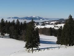 Mont Montoz_23