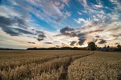 Billinge Skies (ianbonnell) Tags: billinge sthelens wigan merseyside northwest england