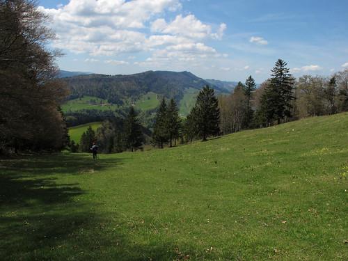 Schönenberg_096