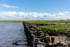 Küstenschutz (juergen.treiber) Tags: salzwiesen sehestedt nordsee jadebusen
