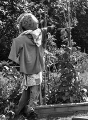 Saucy Scarecrow (magaroonie) Tags: rbge scarecrow 7daysofshooting week6 inthegarden blackandwhitewednesday