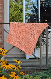 Blanket for Dotty