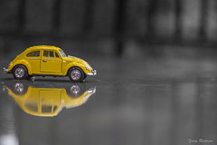 Yellow (Yures) Tags: miniaturas
