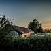 Golden hour barn (Matthew Johnson1) Tags: barn hedge goldenhour glow hue sky sunset fields landscape westhaddon