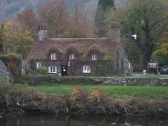 romantic-house