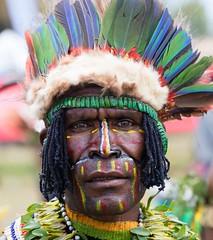 man green beetles on forehead (kthustler) Tags: goroka singsing papuanewguinea tribes huliwigmen mudmen