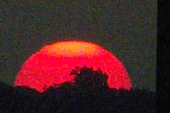 sunrise over East Dallas Texas 2nd day of Fall 2017 (29) (Learn, Love, Conserve) Tags: sunrise texas dallas sun