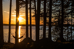 sunset hour (Stefano Rugolo) Tags: stefanorugolo pentax k5 smcpentaxda1855mmf3556alwr sea water sky sunset mood magic red orange silhouettes trees sun summer summerplace atmosphere amaca relaxing serene peaceful tranquillity hammock