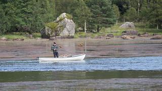 Skitt fiske