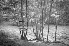 Summer's Over (emanuele_f) Tags: summer playground treehouse contaxaria carlzeiss planar 50mm f14 adox chs100ii r09 150 blackandwhite film analog