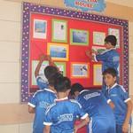 4 - Board Decoration(14)