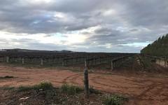 Farm 548C Bilbul Road, Bilbul NSW