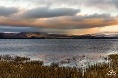 Tomales Bay Sunset (Selkii's Photos) Tags: california clouds dusk evening inverness marsh pointreyesstation sunset tomalesbay water