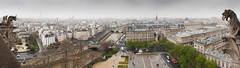 View to Seine from Notre-Dame de Paris (Dmitry Yelloff) Tags: city town capital sight view landmark place interest cityscape river landscape vacation holiday building house construction architecture roof street day water rain weather historical downtown location travel tower autumn perspective voyage trip horizontal panorama medieval paris france sculpture mysterious gargoyle gothic notredamedeparis seinne ruedelacite hopitalhoteldieu prefecturedepolice iledelacite