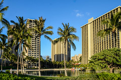 HI-2458 (misterperturbed) Tags: hawaii honolulu waikiki